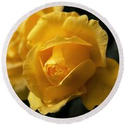 New Yellow Rose Round Beach Towel