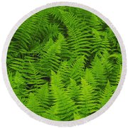 New York Ferns Round Beach Towel