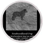 Newfoundland Dog Vintage Sketch Round Beach Towel