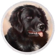 Newfoundland Round Beach Towel