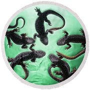 Newts  Pleurodelinae  On The Surface Round Beach Towel