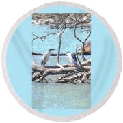 Night Herons Round Beach Towel