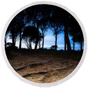 Night In The Forest Round Beach Towel