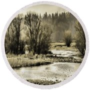 Nisqually Tide Pools Round Beach Towel