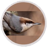 No Hands - Fayetteville - Nuthatch Round Beach Towel