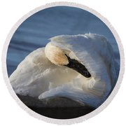 Swan Tuck Round Beach Towel