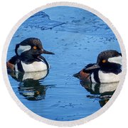 Male Hooded Merganser Pair Round Beach Towel