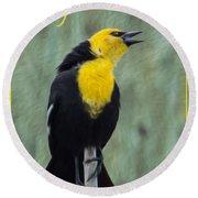 Yellow-headed Blackbird Singing Round Beach Towel
