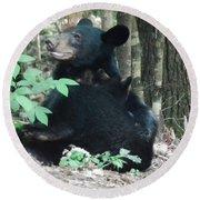 Bear - Cubs - Mother Nursing Round Beach Towel