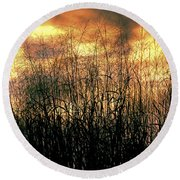 Noble Grasses Round Beach Towel