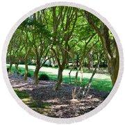 Norfolk Botanical Garden 3 Round Beach Towel