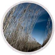 Norfolk Reeds Round Beach Towel
