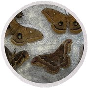 North American Large Moth Collection Round Beach Towel