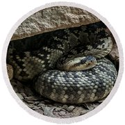 Northern Black-tailed Rattlesnake 2 Round Beach Towel