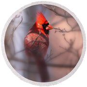 Northern Cardinal Dominent Male Round Beach Towel