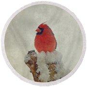 Northern Cardinal Round Beach Towel by Sandy Keeton