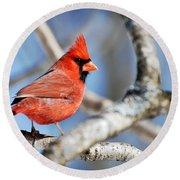 Northern Cardinal Scarlet Blaze Round Beach Towel