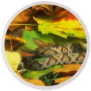 Northern Copperhead Camouflaged Round Beach Towel