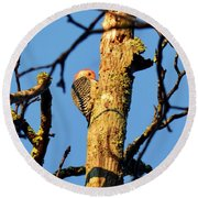 Northern Flicker At Sunrise Round Beach Towel