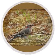 Northern Flicker Woodpecker Round Beach Towel
