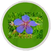 Northern Geranium In Jasper National Park-alberta  Round Beach Towel