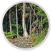 Northern Woods Round Beach Towel