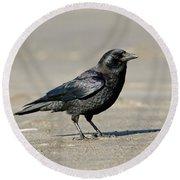 Northwestern Crow Round Beach Towel
