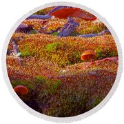 Not A Rolling Stone Round Beach Towel