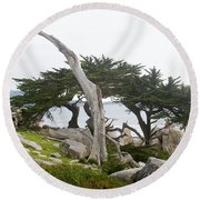 Not The Ghost Tree Round Beach Towel