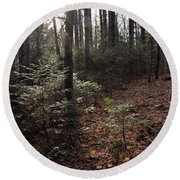 November In The Pines Round Beach Towel