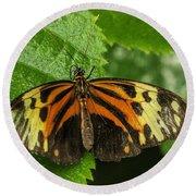Numata Longwing Butterfly Round Beach Towel