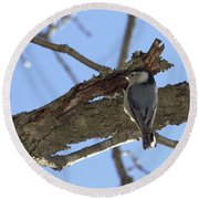 Nuthatch Getting To The Good Stuff Round Beach Towel