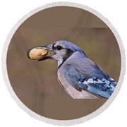 Nutty Bluejay Round Beach Towel