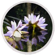 Nymphaea Colorata. Water Lilies Round Beach Towel