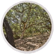 Oak Forest - The Magical And Mysterious Trees Of The Los Osos Oak Reserve Round Beach Towel