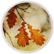 Oak Leaves At Autumn Round Beach Towel