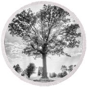 Oak Tree Bw Round Beach Towel