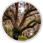 Oak Tree Round Beach Towel