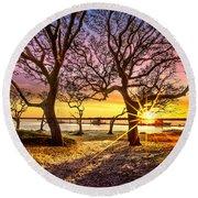 Oak Trees At Sunrise Round Beach Towel