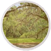 Oak Trees Draped With Spanish Moss Round Beach Towel