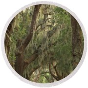 Oaks Of Georgia Round Beach Towel
