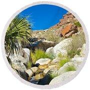 Oasis On Borrego Palm Canyon Trail In Anza-borrego Desert Sp-ca Round Beach Towel
