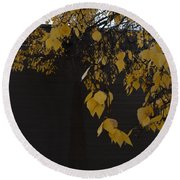 Ochre And Umber Round Beach Towel
