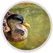 October Duck Round Beach Towel by Marty Koch