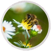 Of Bee And Flower Round Beach Towel