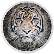 Of Tigers And Stone Round Beach Towel