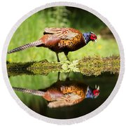 Oh My What A Handsome Pheasant Round Beach Towel