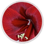 Oh So Red Round Beach Towel