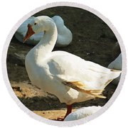 Oil Painting - A Duck Making A Pose Round Beach Towel