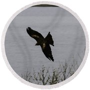 Oil Painting - A Large Bird Flying As Part Of The Birds Of Prey Show Round Beach Towel